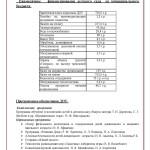 Публичный отчет2013_7